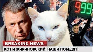 Кот и Жириновский: наши победят! Ломаные новости от 19.06.18