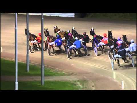 Vidéo de la course PMU PRIX HARRIE VAN DEN BOSCH