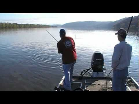 Susquehanna River Fishing in PA. Jst Fishin Guide Service  25 lb Flathead Catfish