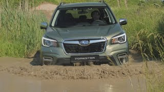 2020 Subaru Forester eBoxer - new 5th generation Forester