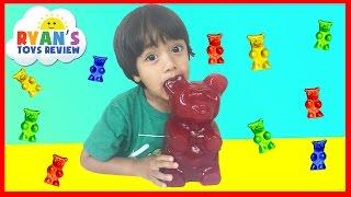World's Largest Gummy Bear Challenge Ryan ToysReview