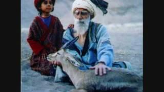 Ghazal Shakeri- Song Of The Red Dervish