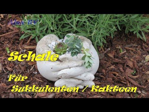 05:42 Garten Deko Aus Beton Selber Machen . Pflanzschale Für Sukkulenten ,  Kakteen