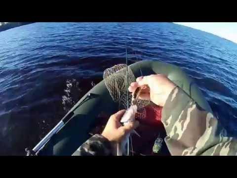 ловля щуки на унже