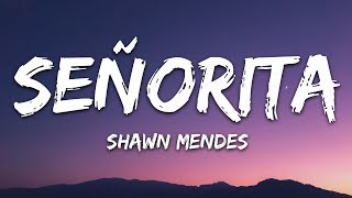 Download lagu Shawn Mendes, Camila Cabello - Señorita (Lyrics) Letra