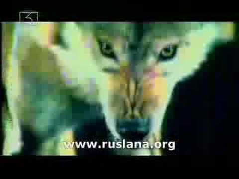 Ruslana. Dance with the wolves Video