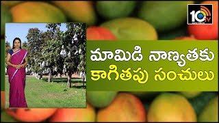 మామిడి నాణ్యతకు కాగితపు సంచులు |  Success Story in Cultivating Mango in Natural Farming Method