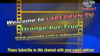LABEORUN TV OFFICIAL CHANNEL TRAILER