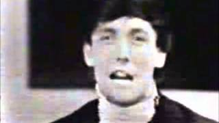 Watch Dave Clark Five Do You Love Me video