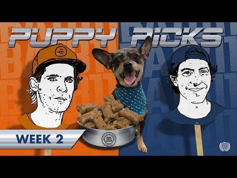 BATB 11 | Puppy Picks: Week 2