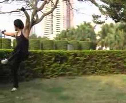 Kungfu demo reel by Ocean Hou-- Cang Long Wo Hu