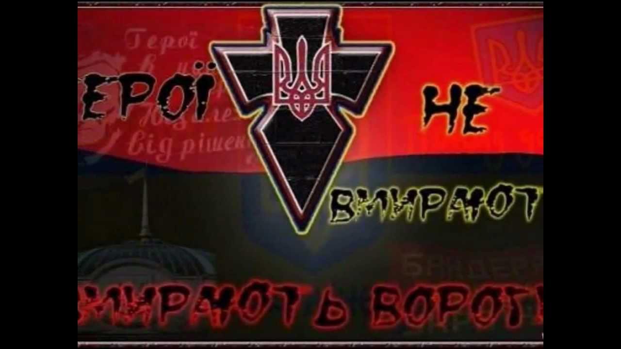 Останки 11 украинских бойцов обнаружены на Донетчине - Цензор.НЕТ 6955