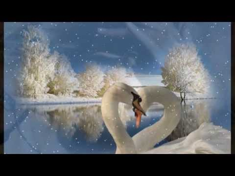 ободзинский видео белые крыл