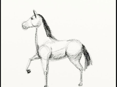 Como dibujar un caballo facilmente - How to draw a horse tutorial
