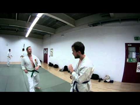 Warwick Kempo JuJitsu Training Demo.mp4 Image 1