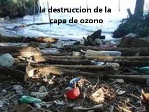PROTECCION AL MEDIO AMBIENTE.wmv