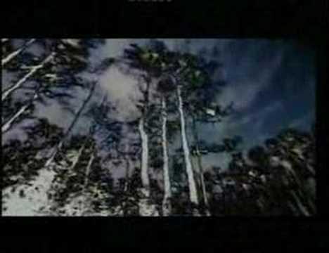 Kosheen - Empty Skies