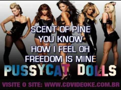 Pussycat Dolls, The   Feelin' Good