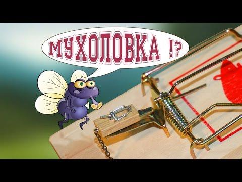 Мышеловка микро! ( mousetrap / DIY )