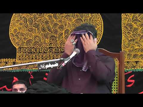 6 Muharram 2017 (1439) Zakir Haji Nasir Abbas Notak Rasul Nagar thumbnail
