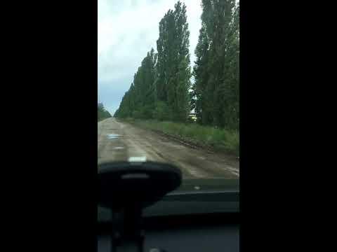 Дорога Кривой Рог - Николаев. Трасса Н-11.