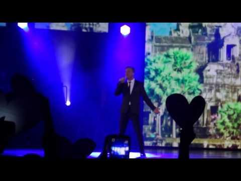 Песни из мюзиклов - Le temps des cathedrales