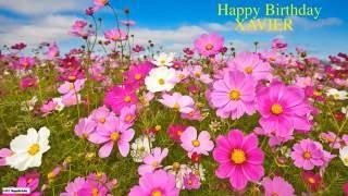 Xavier like Zavier  Nature & Naturaleza - Happy Birthday