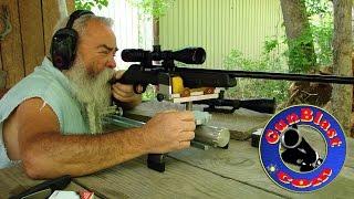 Shooting the Savage A17 17 HMR Semi-Automatic Rifle - Gunblast.com