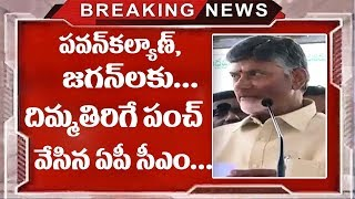 CM Chandrababu Naidu Sensational Comments ON YS Jagan And Pawan Kalyan | TTM