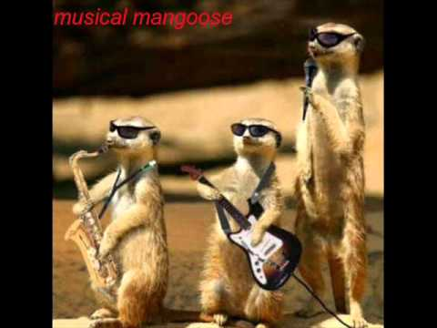 Gur Naal Ishq Mitha - Bally Sagoo by musical mangoose