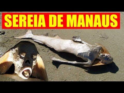 """reportagem do Programa """"Chumbo quente"""", sobre a sereia que apareceu na praia da lua em Manaus, capital do Amazonas."""