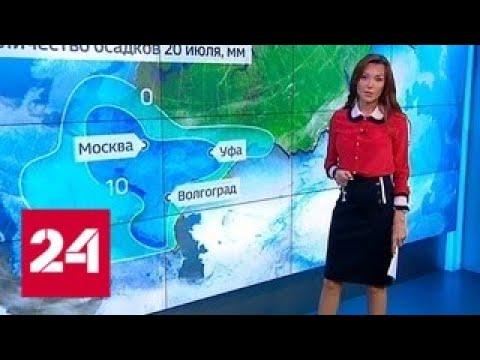 Погода 24: дожди в столице задержатся - Россия 24