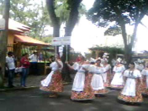 carnaval de holambra 2011