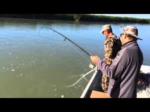 подледная рыбалка на амуре