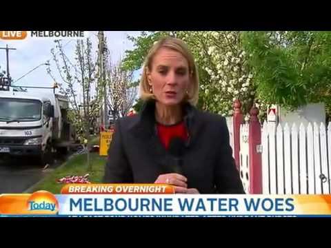 Melbourne homes flooded after hydrant bursts