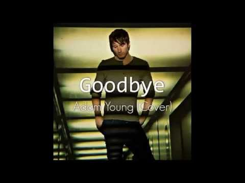 Owl City - Goodbye