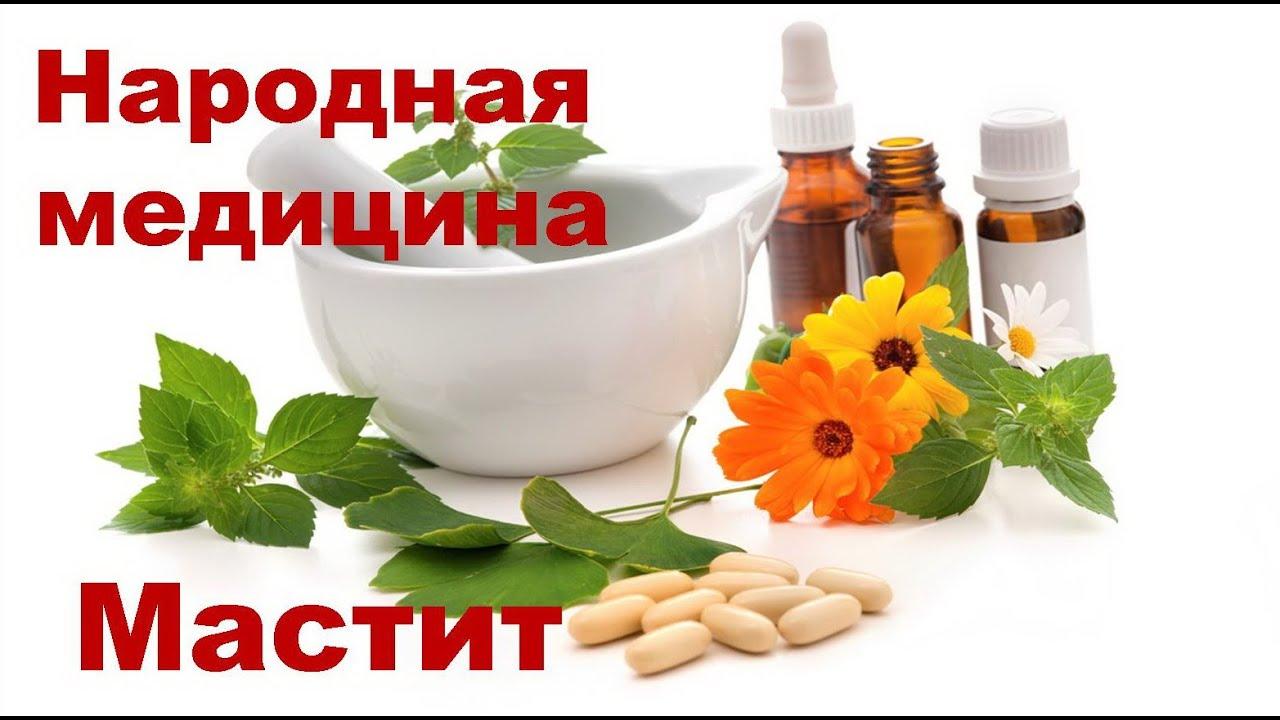 Лечение геморроя рецепты народной медицины
