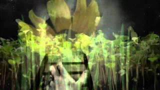 Watch Sinead OConnor Blood Of Eden video