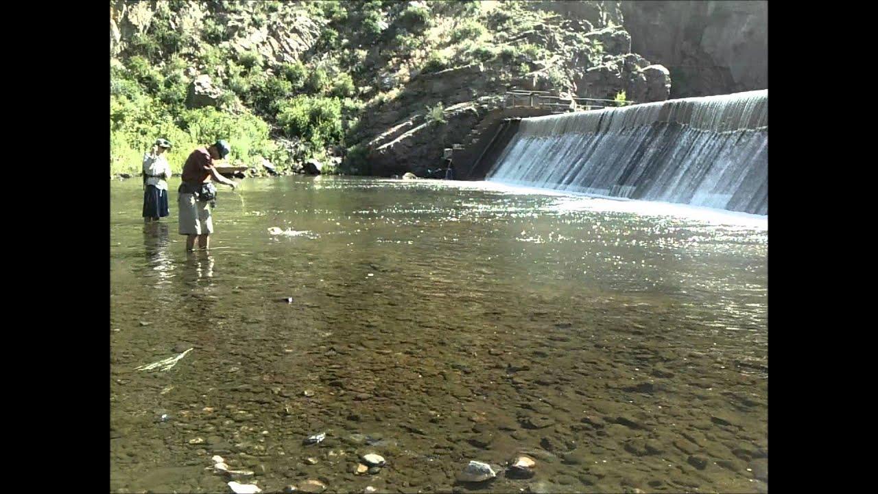 Waterton canyon youtube for Waterton canyon fishing report