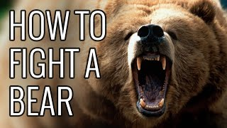 How To Fight A Bear - EPIC HOW TO