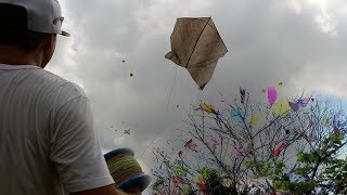 Rio de Janeiro a Cidade da Pipa, Festival Serra Alta