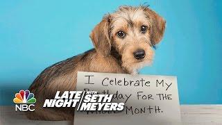 Extreme Dog-Shaming: Birthday Month, Roomba Defiler
