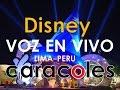 *** Voz en Vivo , show infantil con personajes que hablan Lima Perú caracoles  - Videos bebes