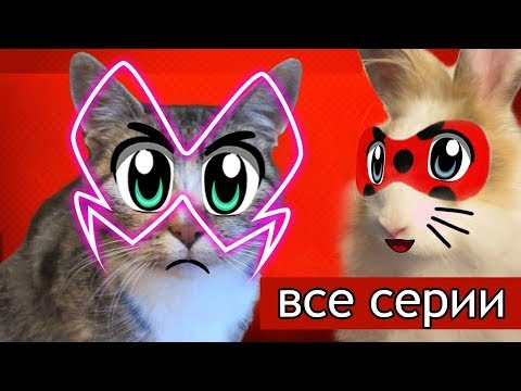 ЛЕДИ БАФ И СУПЕР КОТ МАЛЫШ - ЛУЧШИЕ СЕРИИ! КРОЛИК БАФФИ И КОТ МАЛЫШ ИГРАЮТ в LadyBug and Cat Noir