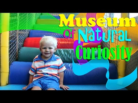 Museum of Natural Curiosity