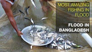 most amazing fishing in flood   flood in Bangladesh