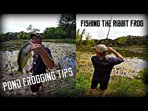 Some pond fishing tackle how to save money and do it for Pond bass fishing tips