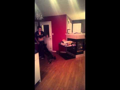 Crazy Boy Dances Like Indian Schoolgirl video