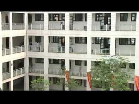 Phim hài - Bộ tứ 10A8 Tập 1 - Ngôi sao đến trường