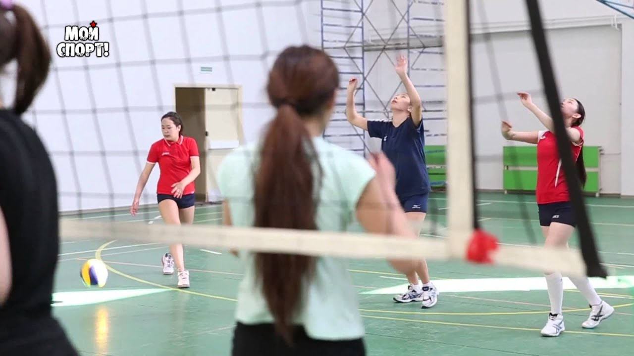 Спорт волейбол учебные 2 фотография